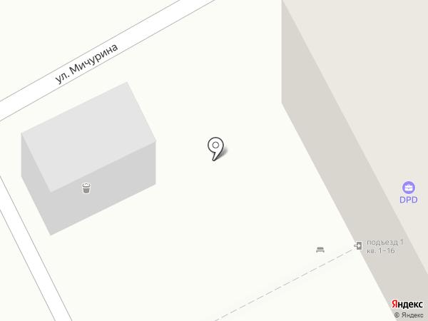 Стрекоза на карте Бора