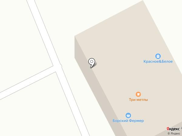 Анастасия на карте Бора