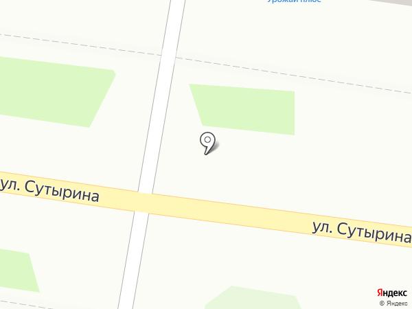 Незабудка на карте Кстово