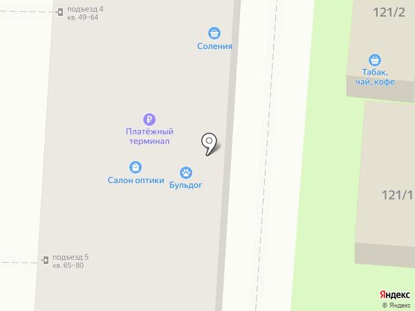 Два ежа на карте Волгограда