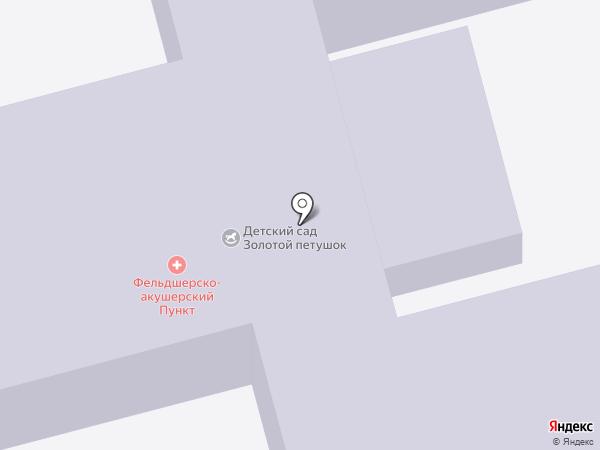 Фельдшерско-акушерский пункт на карте Больших Чапурников
