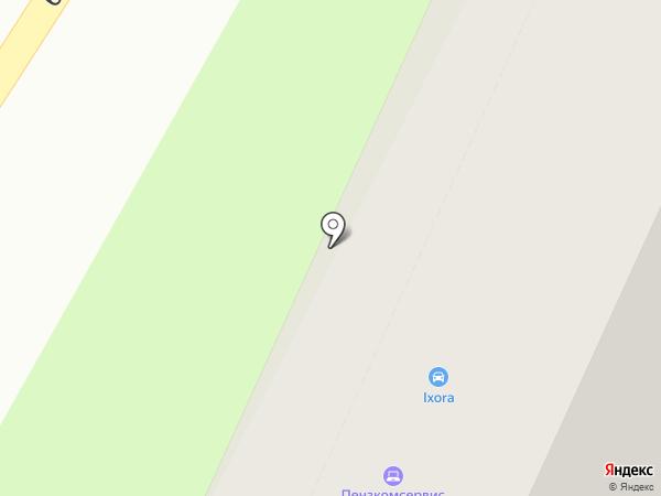 Иксора на карте Пензы