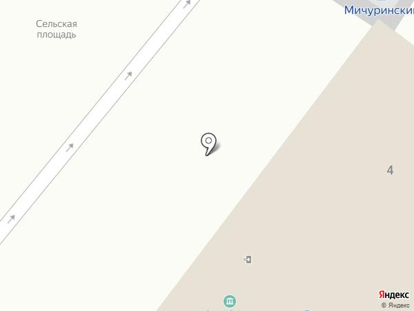 Твой Дом на карте Мичуринского