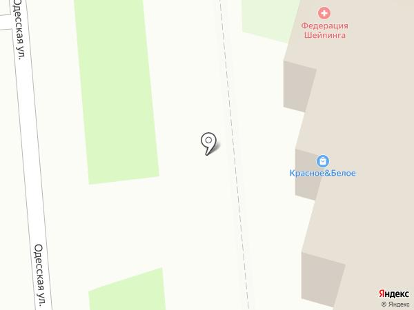 Красное & Белое на карте Пензы