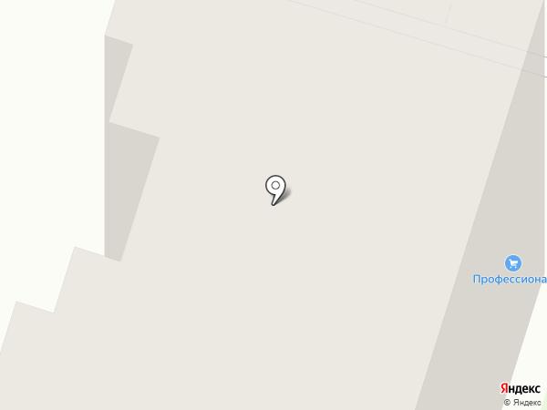 Профессионал на карте Пензы