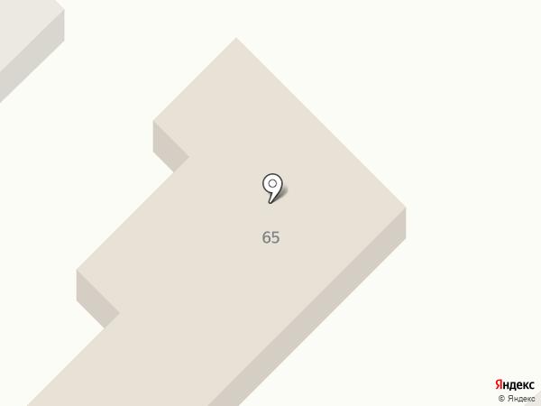 Львенок на карте Пензы
