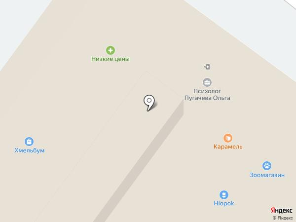 Брис-Босфор на карте Пензы