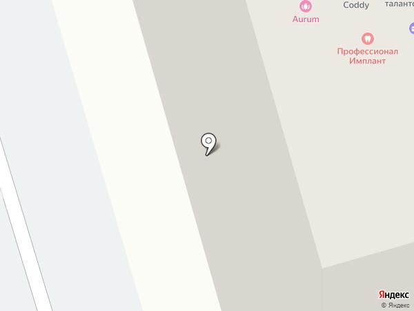 Клевер на карте Пензы