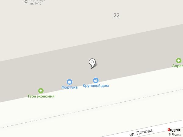 Крупяной Дом на карте Пензы