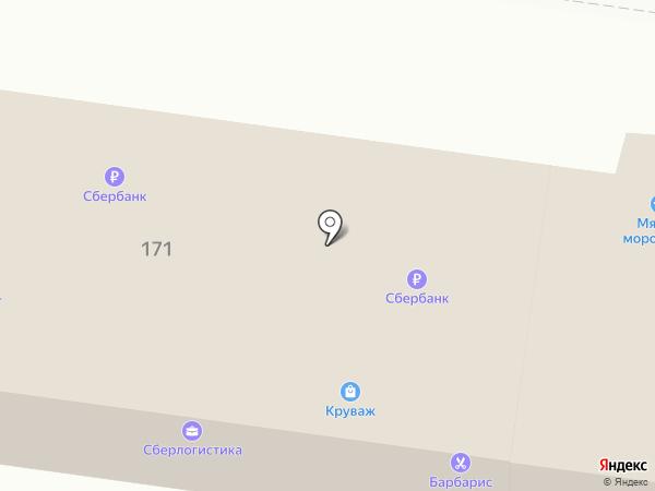 Визит на карте Пензы
