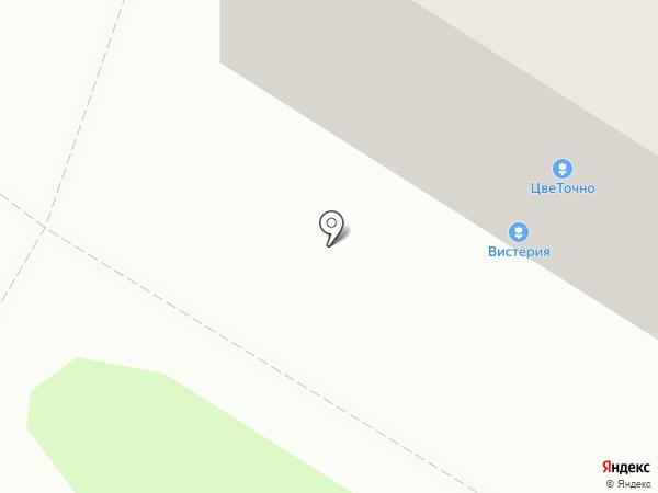 ЗдравСити на карте Пензы
