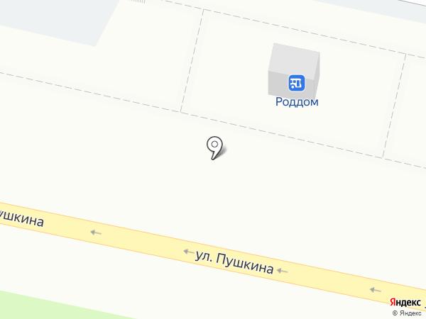 Точка на карте Пензы