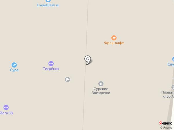 Спутник на карте Пензы