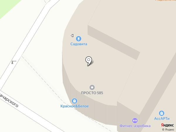 Ладья на карте Пензы