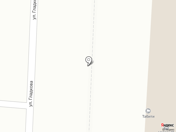 Селекта на карте Пензы
