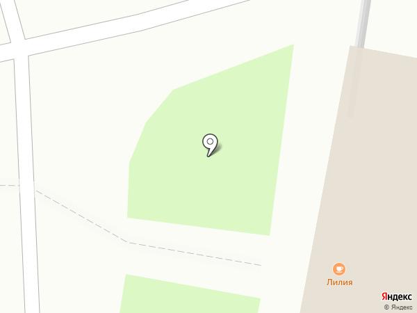 Лилия на карте Пензы