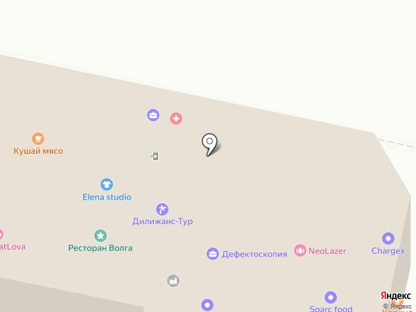 Камилия на карте Пензы