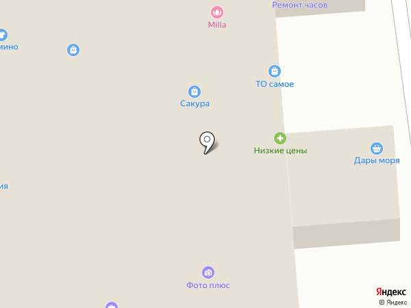 Дары моря на карте Пензы