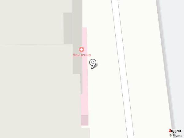 Авиценна на карте Засечного
