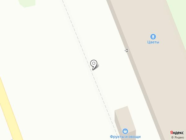 Спутник на карте Засечного