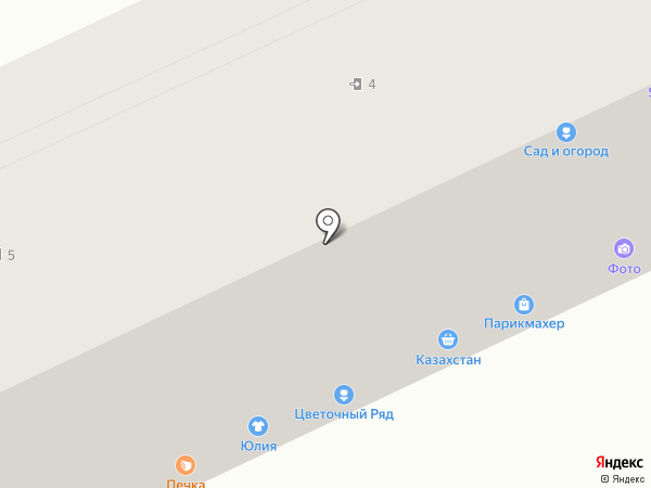 Ладушка на карте Саранска