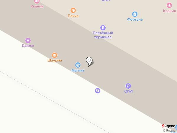 Ксения на карте Саранска