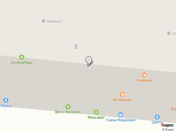 Лиана на карте Саранска