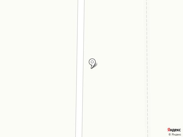 Пингвин на карте Саранска