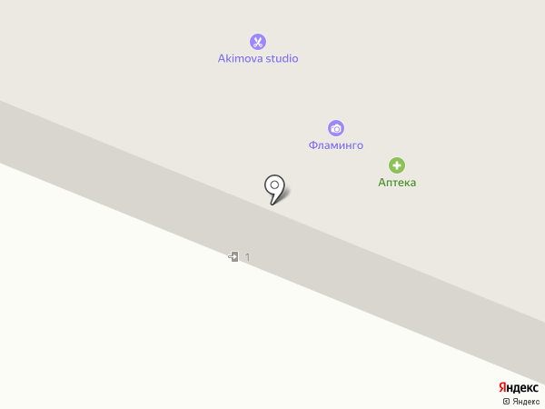 Аптекарь на карте Саранска
