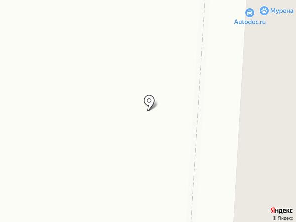 Диковинка на карте Саранска
