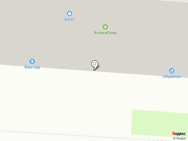Фитоцентр на карте Саранска