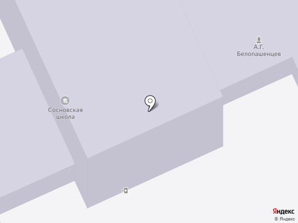Средняя общеобразовательная школа, МБОУ на карте Сосновки