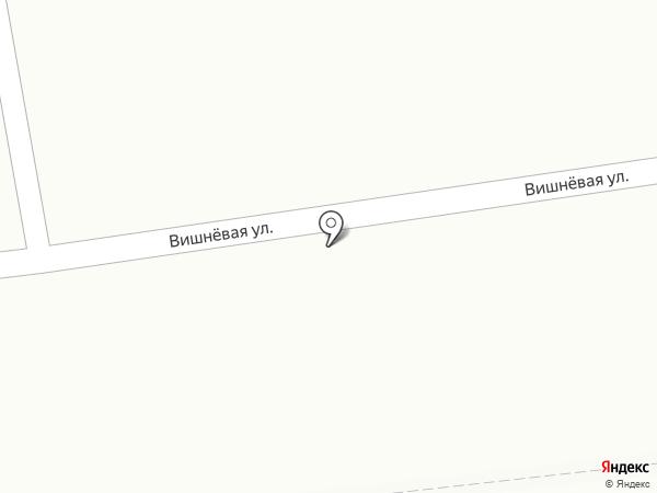 Пивной триумф на карте Саратова