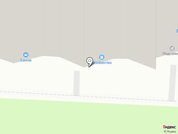 Гвоздь на карте Саратова