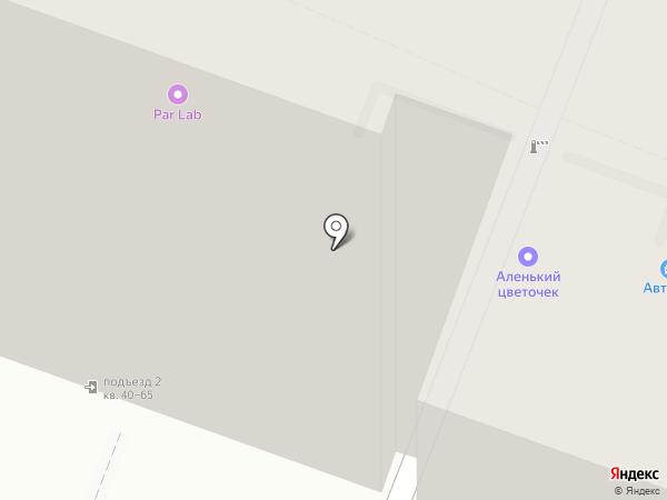 Чайка на карте Саратова