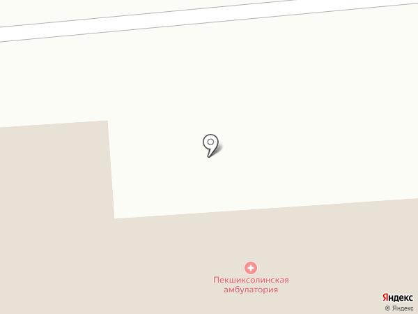 Пекшиксолинская сельская библиотека на карте Пекшиксолы