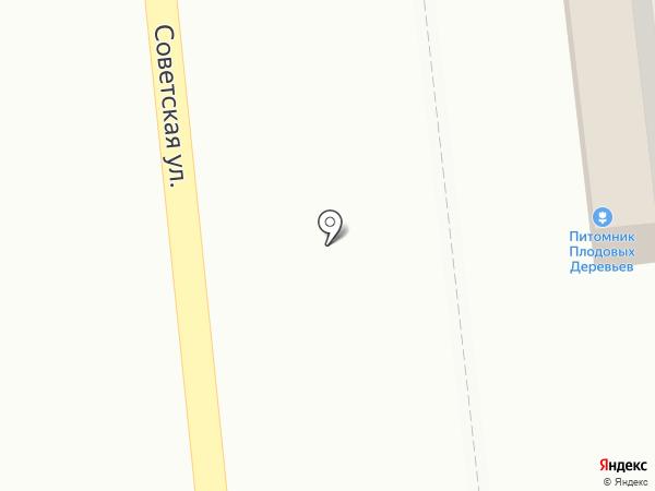 Profi на карте Медведево