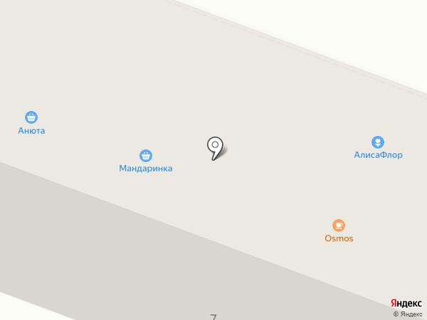 Алиса на карте Йошкар-Олы