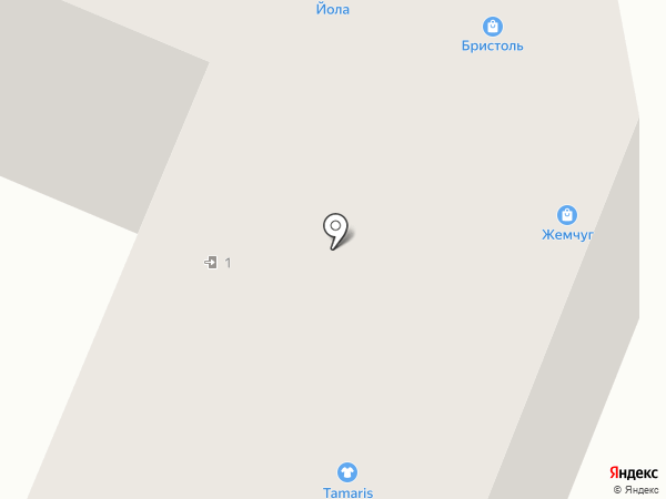 Бристоль на карте Йошкар-Олы