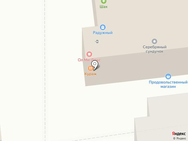 Авторская школа Ларисы Дворядкиной на карте Астрахани