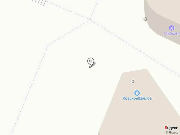 Рюмашка на карте Ульяновска