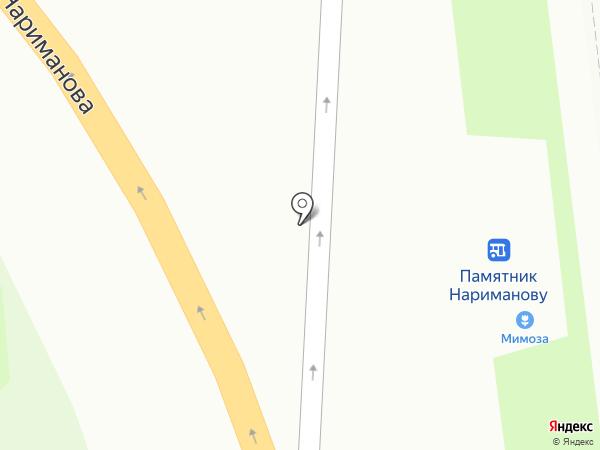 Мимоза на карте Ульяновска