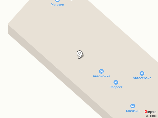Скорпион на карте Зеленодольска
