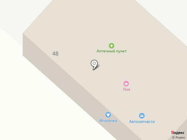 Магазин товаров смешанного типа на карте Васильево