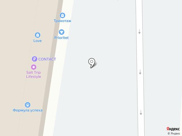 Аля Шпилькина на карте Тольятти