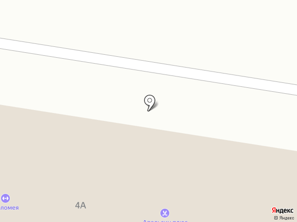 Мясорубка на карте Тольятти
