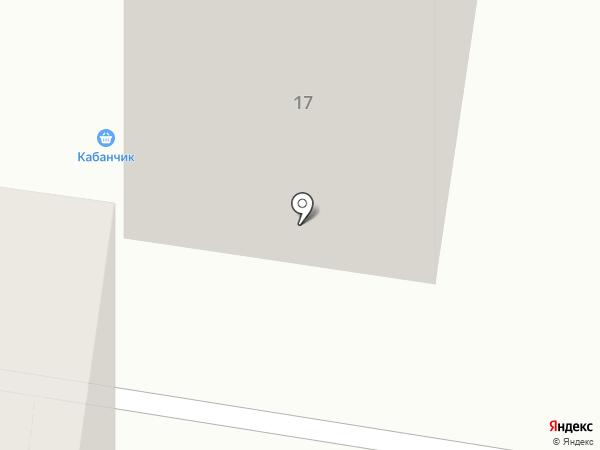 Кабанчик на карте Тольятти