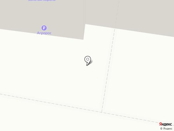 Дилижанс на карте Тольятти