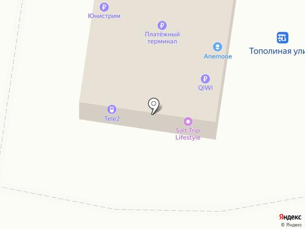 Белый КОТ на карте Тольятти