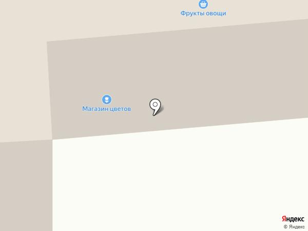 Красногорский на карте Костиного